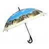 Dziecięca duża automatyczna parasolka z gwizdkiem, kotek pod kocykiem